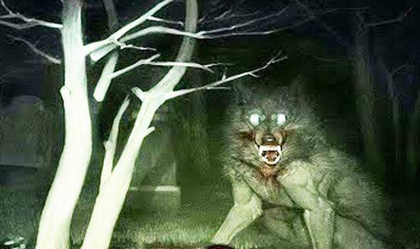 Werewolf-1056224